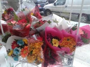 Invasión de flores para recibir la primavera.